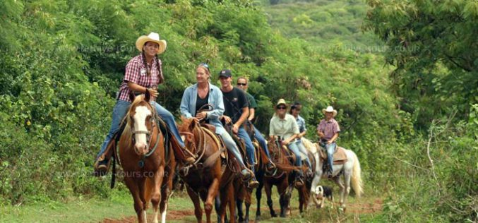 Horse Riding Tour in Fethiye