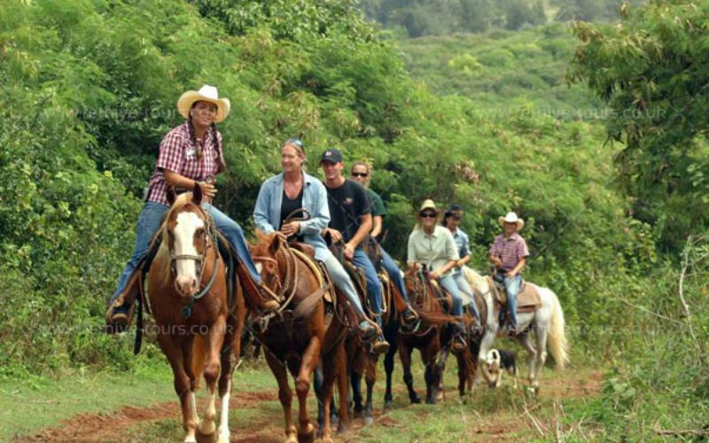Horse Riding Tour in Fethiye